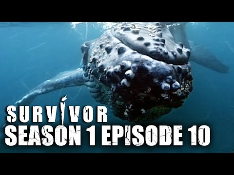 Australian Survivor | SEASON 1 (2002) | EPISODE 10 - FULL EPISODE