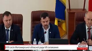 Депутат Житомирської облради Ілля Смичок повідав, що його однопартійці виказують «тупі ідеї»
