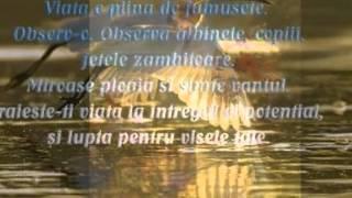 COLAJ DE MELODII  - ale lui Gică Petrescu