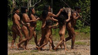Video suku amazon ekuador suku primitif pemakan daging monyet download MP3, 3GP, MP4, WEBM, AVI, FLV Oktober 2018