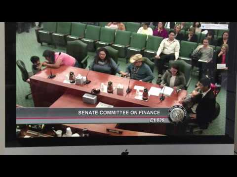 Texas Senate Committee on Finance Medicaid testimony Blakely Hernandez