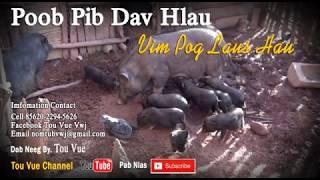 Poob Pib Dav Hlau Vim Pog Laus Hau 16-6-2017