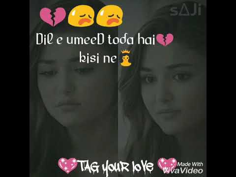 dile-umeed-toda-hai-kisi-ne...whatsapp-status...by-malik
