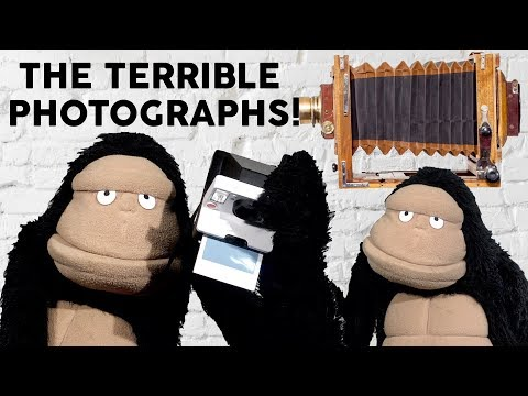 Glove and Boots | The Terrible History of Photographs | Funny videos | Puppets