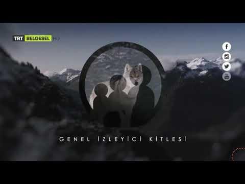 TRT Belgesel - Genel İzleyici Kitlesi