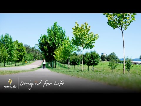 Experience It - Avondale - Designed For Life