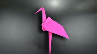 Gambar cover Origami: Flamingo - Instructions in English (BR)