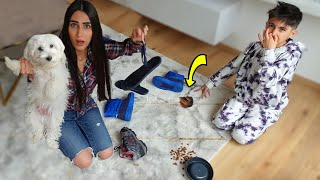 كلبنا اوسكار خرّب بيتنا و كسر الزجاج 😭!! (عمل كوارث)