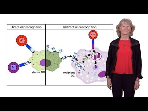 Megan Sykes (Columbia U.) 1: Introduction to Transplantation