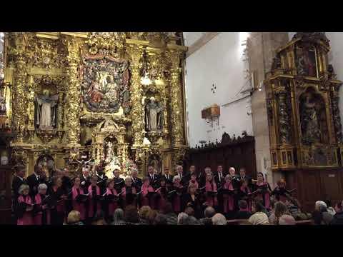 Noche De Paz - Aures Cantibus - Zamora 2018