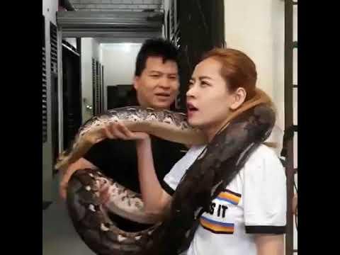 Hậu trường Chi Pu tập 'Talk to me' với trăn khổng lồ