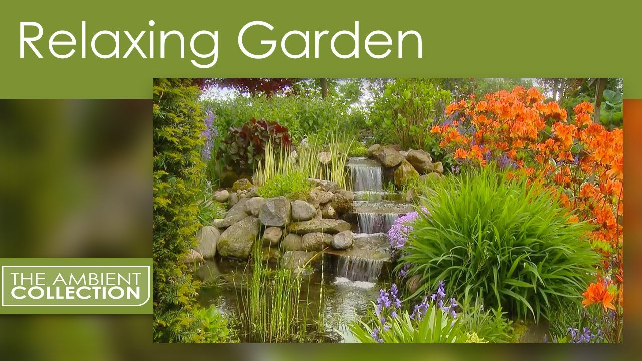 Relaxing garden dvd relax with a amazing flower garden for Flowers and gardens pictures