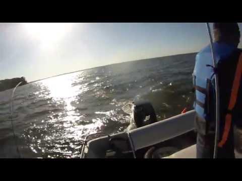 Lake Livingston White Bass Trolling With CrankBait