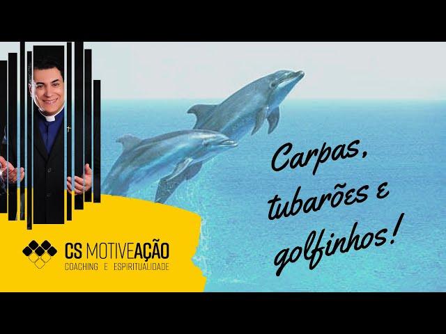MotiveAção 09 -  Carpa, tubarão ou golfinho? Qual deles você é? - Pe. Chrsytian Shankar