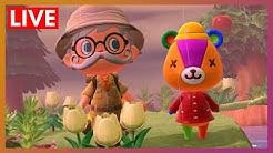 Stitches' Teddy Bear Picnic (Take 2) | Animal Crossing New Horizons LIVE