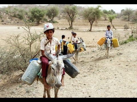 الأمم المتحدة: 35 ألف أسرة نازحة من الحديدة اليمنية  - 17:23-2018 / 7 / 16