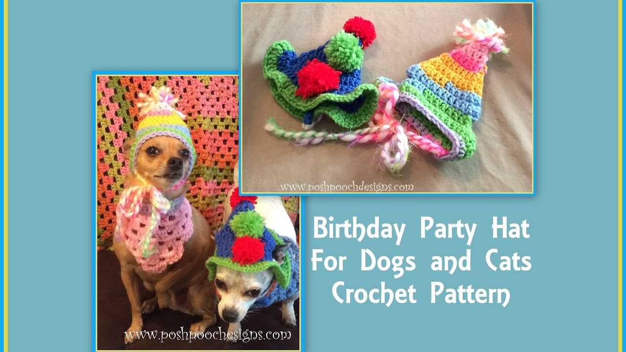 Birthday Party Hat For Dogs And Cats Crochet Pattern