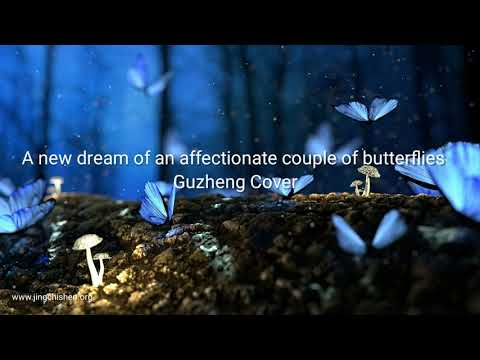 A new dream of an affectionate couple of butterflies | Guzheng Cover