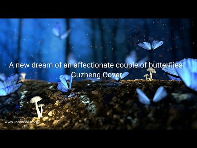 A new dream of an affectionate couple of butterflies | Guzheng Cover