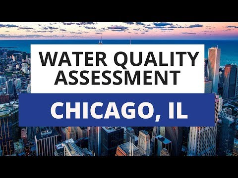 Chicago Water Quality Assessment: What You Need To Know
