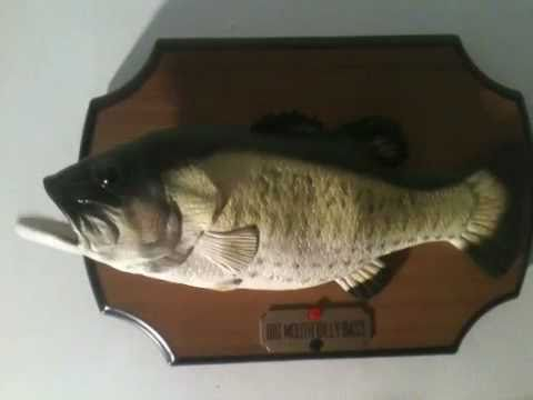 Singing fish largemouth bass on the wall youtube for Talking fish on wall