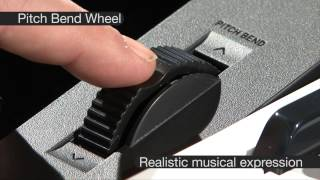 Casio CTK 3200 Full Size Keyboard