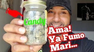 Download Me Encuentra Mi Frasco De Mari (Broma)| Rosa y Jaime Mp3 and Videos