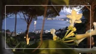 La Pineta di Guardia - Messina