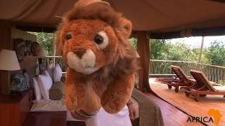Bushtop Camps in Kenya's Masai Mara - A Luxury Safari Boutique Hotel Review