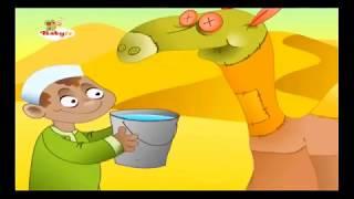 Deve Sally - Sally the Camel - Baby TV Türkçe
