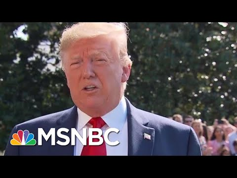 President Donald Trump: Mitch McConnell 'Is Totally On Board' With Background Checks On Guns | MSNBC