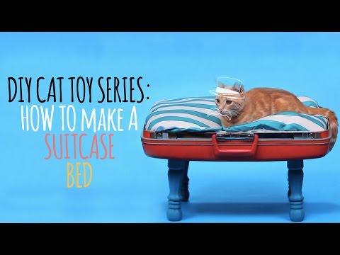DIY Cat Toys - How to Make a Suitcase Bed