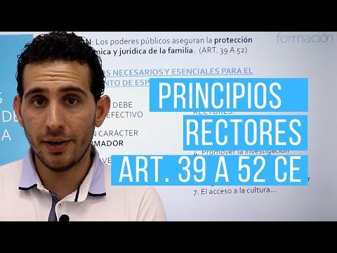 Principios Rectores de la Política Social y Económica.
