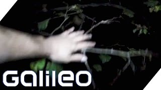 One night in the scariest forest in the world - Hoia Baciu | Galileo | ProSieben