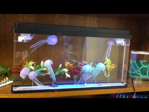 New Deluxe Jellyfish Aquarium