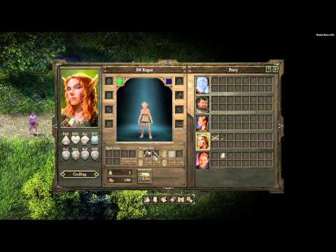 Pillars of Eternity Beta: Combat Guide for New Players #1