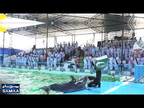 National Anthem | Dolphin Show | Karachi | SAMAA TV | 12 May 2017