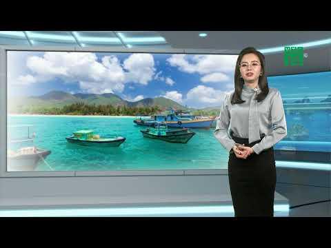 Thời tiết biển 08/03/2021: Không khi lạnh suy yếu, thuận lợi cho bà con ngư dân ra khơi | VTC14