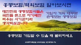 홍콩보험/역외보험 가이드 1_유배당보험