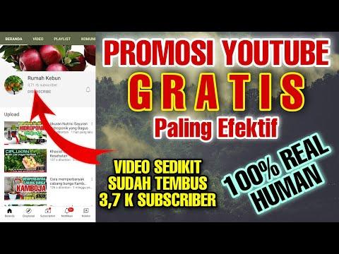 Promosi Youtube Gratis Dan Tidak Masuk Spam Youtube