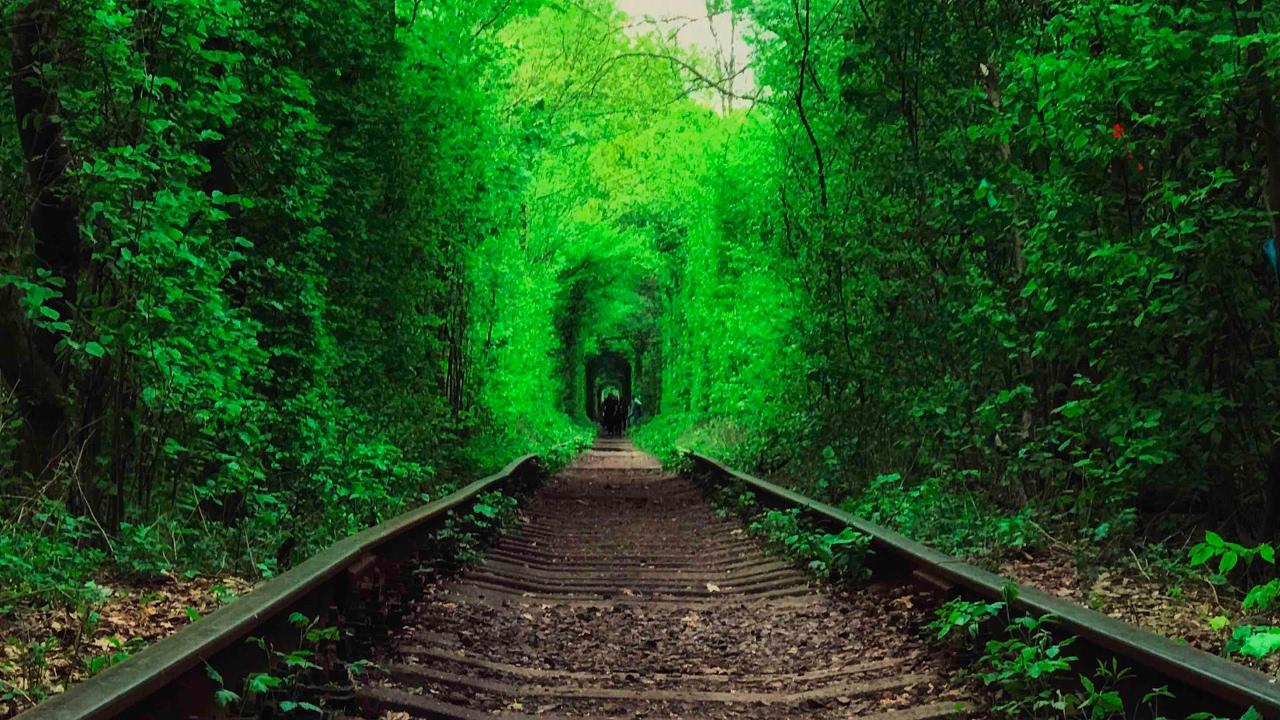 Картинки по запросу туннель любви