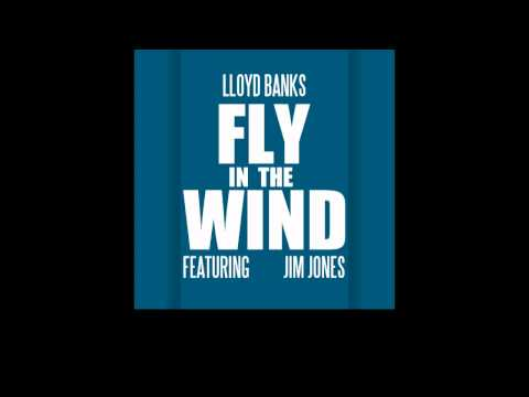 Lloyd Banks - Fly In The Wind feat Jim Jones [New/CDQ/Dirty/NODJ/2011]
