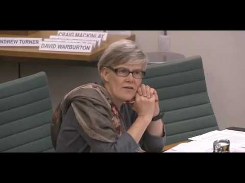 Kate Green MP questions Minister of State, David Jones MP during European Scrutiny Committee