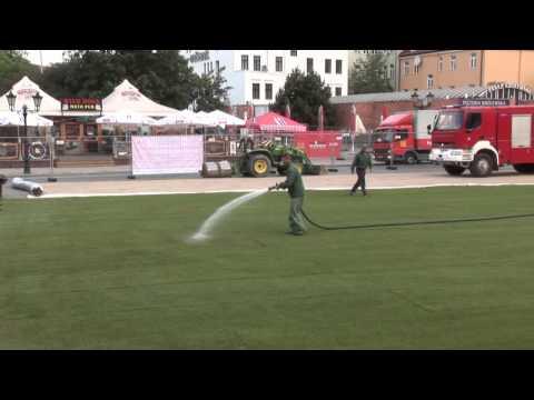 G&SYN Gdańsk Coca-Cola Cup 2015