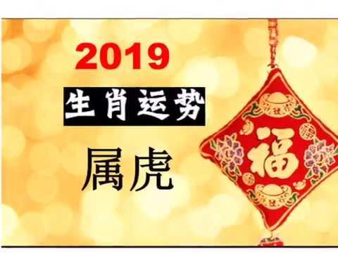 2019 年 属虎运程
