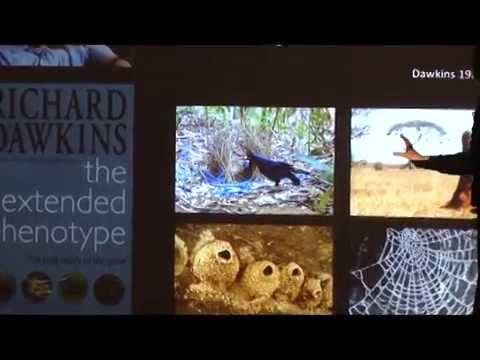 From Darwin to DNA: The Genetic Basis of Animal Behavior