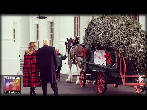 First Lady Melania Trump Stuns in Festive Outfit as White House Prepares for Christmas