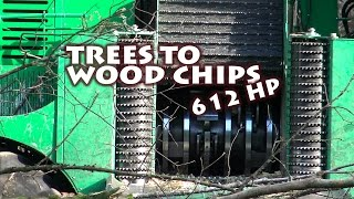 Transforming trees to wood chips with 612 HP in the Vosges