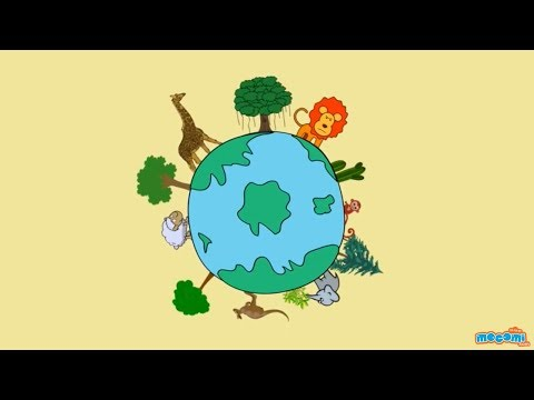 What is Biodiversity & Its Importance? Environmental Science