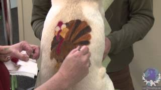 Airbrushing a Thanksgiving Stencil on a Pet